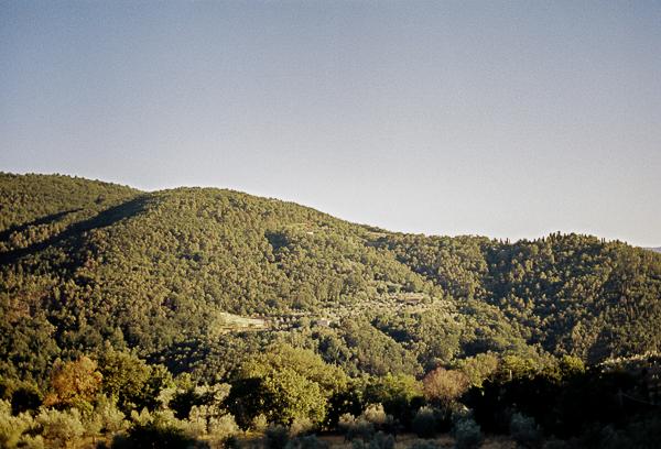 Landscape | Minolta SRT100X
